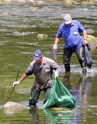 """Empleados de Froxá declaran que trabajadores de la empresa Johnson Controls presuntamente """"dejaron rebosar conscientemente"""" la mezcla de agua y amoniaco"""