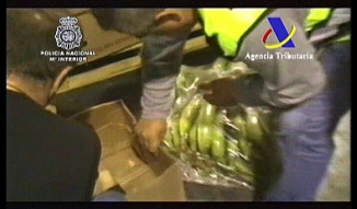 Intervenidos 645 kilos de cocaína que viajaron desde Ecuador entre plátanos macho