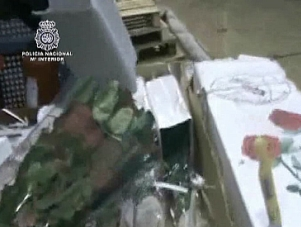 Cocaína escondida en cajas de rosas
