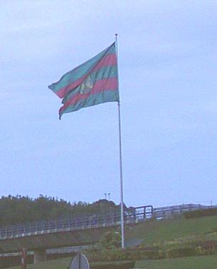 Robar una bandera puede ser delito de ultraje penado con multas de siete a doce meses