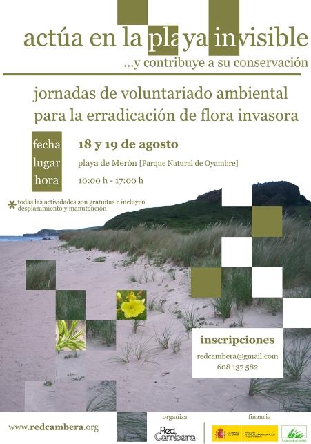 Organizada una jornada de lucha contra la flora exótica invasora en la playa de Merón