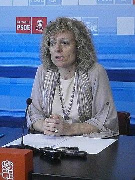 Díaz Tezanos avanza que los socialistas trabajarán desde el Parlamento y la calle