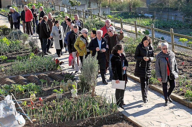 La Alcaldesa de Santander anuncia mejoras en los huertos de la Finca Altamira