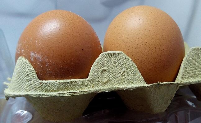 Lainez responde en la UIMP a la polémica de los huevos contaminados por pesticidas