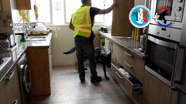 La Guardia Civil y la policía francesa desarticulan una organización criminal que vendía grandes cantidades de droga / Fotos: Guardia Civil