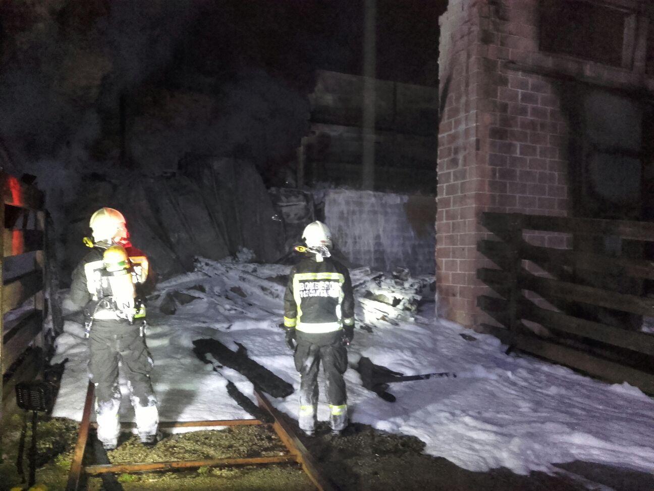 Fallecen tres jirafas de Cabárceno al incendiarse la cabaña de su recinto