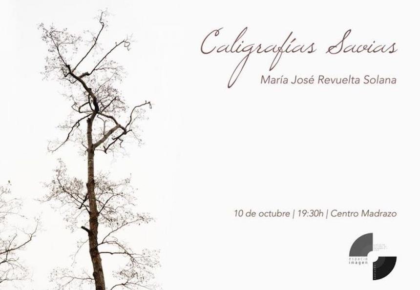 A partir del miércoles, día 10, el Doctor Madrazo abrirá sus puertas a la exposición de fotos de María José Revuelta 'Caligrafías Sabias'