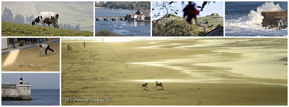 Collage de fotos de Cantabria (C) Cantabria Diario - David Laguillo