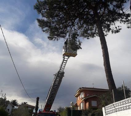 El 112 recibe 162 llamadas y gestiona 78 incidencias por viento