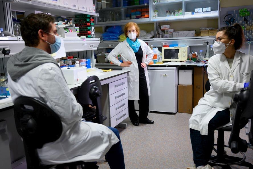 La UIMP y el CSIC impulsan una nueva edición del máster en 'Pandemias, Salud Global y covid-19'